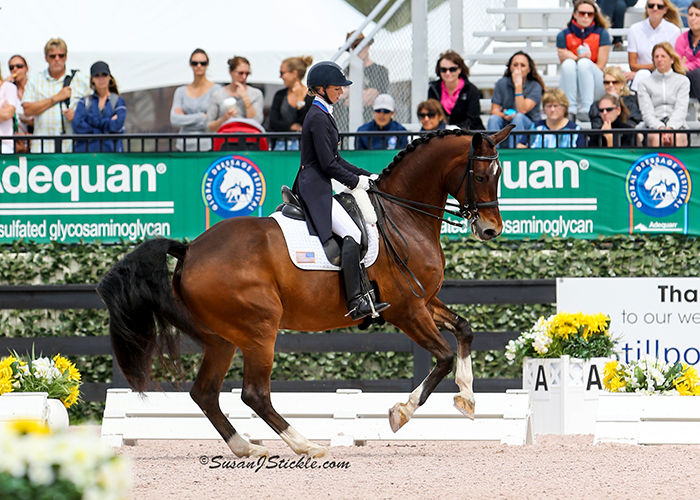 Laura Graves and Verdad Records Second Ever 80% Score: FEI Nations Cup